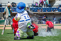 Aftershock performs his rain dance between innings of the game between the Rancho Cucamonga Quakes and the Visalia Rawhide at LoanMart Field on May 14, 2018 in Rancho Cucamonga, California. The Rawhide defeated the Quakes 5-0.  (Donn Parris/Four Seam Images)