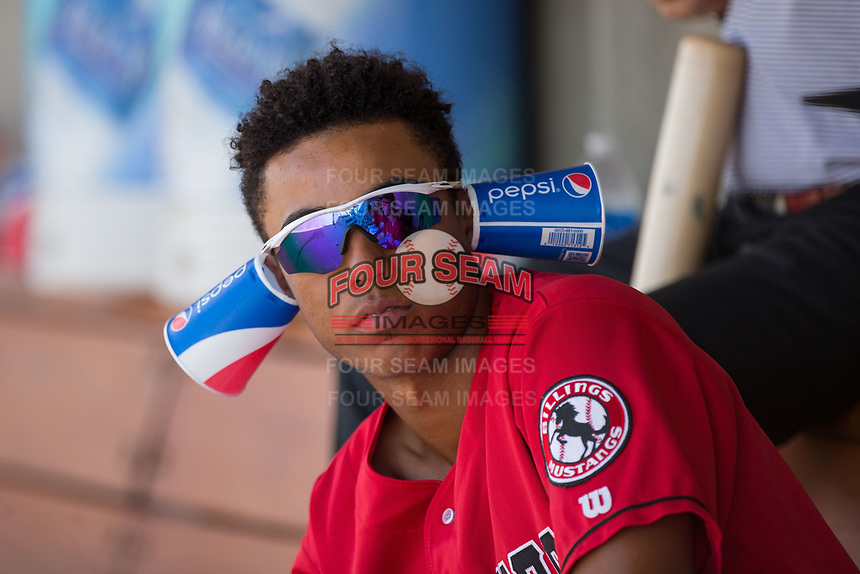Miles Gordon (23) of the Billings Mustangs has some fun in the dugout during the game against the Missoula Osprey at Dehler Park on August 20, 2017 in Billings, Montana.  The Osprey defeated the Mustangs 6-4.  (Brian Westerholt/Four Seam Images)