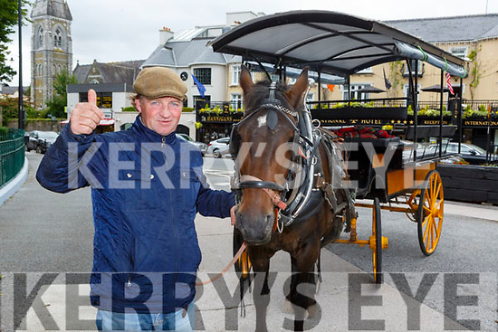 Killarney Jarvey Paul Tangney and Jimmy who back on the rank after returning from lockdown on Monday