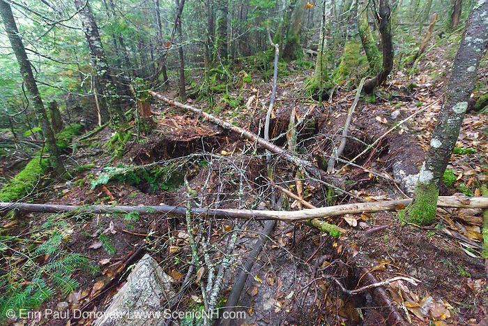 Large holes on the side of the Mt Tecumseh Trail in Waterville Valley, New Hampshire during the summer of 2016. Rocks for stone staircases being built along the trail are taken from the side of the trail, and these holes are left behind.