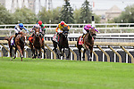 Mondialiste (IRE)(7) with Jockey Fearghal Lynch aboard runs to victory at the Ricoh Woodbine Mile Stakes at Woodbine Race Course in Toronto, Canada on September 13, 2015.