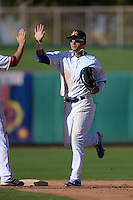 Mesa Solar Sox outfielder Albert Almora (8), of the Chicago Cubs organization, high fives teammates after an Arizona Fall League game against the Scottsdale Scorpions on October 15, 2013 at HoHoKam Park in Mesa, Arizona.  Mesa defeated Scottsdale 7-4.  (Mike Janes/Four Seam Images)