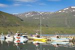 Iceland, fishing boats