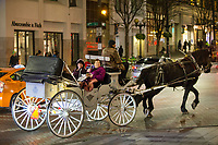 Horse drawn carriage for Crosscut