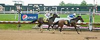 Hedonemewrongsong winning at Delaware Park on 6/3/13