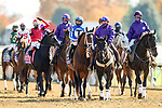 November 7, 2020 :Horses get ready for the Big Ass Fans Dirt Mile on Breeders' Cup Championship Saturday at Keeneland Race Course in Lexington, Kentucky on November 7, 2020. Wendy Wooley/Breeders' Cup/Eclipse Sportswire/CSM