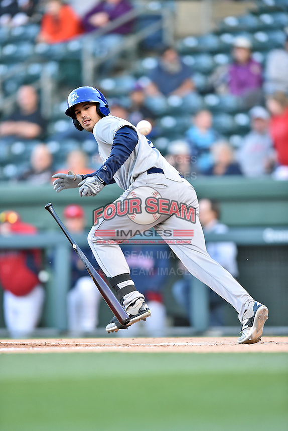 Asheville Tourists designated hitter Josh Fuentes (19) attempts to lay down a bunt during a game against the Greenville Drive at Fluor Field on April 7, 2016 in Greenville South Carolina. The Drive defeated the Tourists 4-3. (Tony Farlow/Four Seam Images)