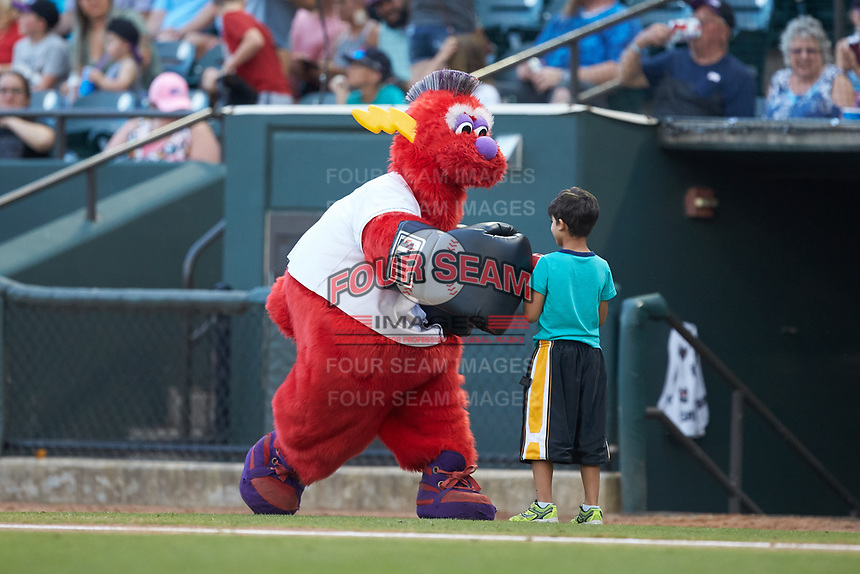 """Winston-Salem Dash mascot """"Bolt"""" entertains fans between innings of the Carolina League game against the Carolina Mudcats at BB&T Ballpark on June 1, 2019 in Winston-Salem, North Carolina. The Dash defeated the Mudcats 5-4 in game two of a double header. (Brian Westerholt/Four Seam Images)"""