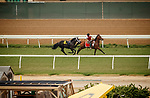 DEL MAR, CA  JULY 31: #6 Empire's Fire breaks free after acting up in the gate and the outrider's skill at catching him on July 31, 2021 at Del Mar Thoroughbred Club in Del Mar, CA. (Photo by Casey Phillips/Eclipse lSportswire/CSM)