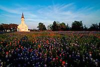 Rural church in field of bluebonnets, Shulenburg, Texas