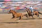 A running horse during the BIg Loop Roping,  Jordan Valley Big Loop Rodeo, Ore.