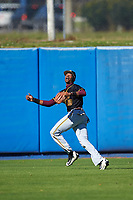 Bethune-Cookman Wildcats outfielder Jordan Delucia (29) during practice before a game against the Wisconsin-Milwaukee Panthers on February 26, 2016 at Chain of Lakes Stadium in Winter Haven, Florida.  Wisconsin-Milwaukee defeated Bethune-Cookman 11-0.  (Mike Janes/Four Seam Images)