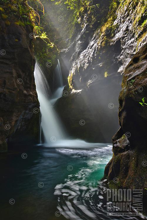 A magical beam of light illuminates a waterfall hidden deep within the heart of Kauai.