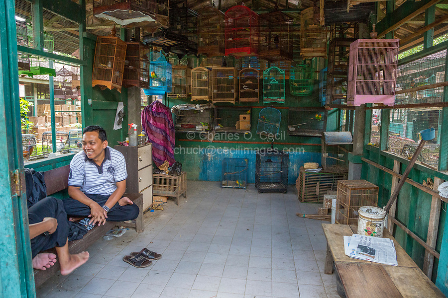 Yogyakarta, Java, Indonesia.  Two Men Conversing in a Shop Selling Caged Birds in the Bird Market.
