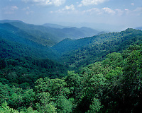 Summer view of the Great Smoky Mountains from Newfound Gap; Great Smoky Mountains National Park, TN