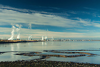Grangemouth Oil Refinery and the Firth of Forth from Kinneil Nature Reserve, Bo'ness, Lothian