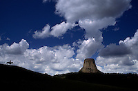 Cowboy drives cattle silhouetted on the ridge under Devil's Tower an ancient volcano plug  or monolithic igneous intrusion that is more than 1200 feet high. It was featured in the Hollywood movie Closer Encounters of the Third Kind in 1977.