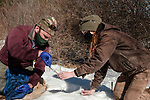 New Hampshire Fish and Game biological technician, Brett Ferry (L), and University of New Hampshire graduate student, Melissa Bauer (R) collect ear clipping from New England cottontail rabbit inside the Great Bay National Wildlife Refuge. This specimen is a female.