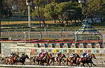 ARCADIA, CA  MARCH 6: The field at the start of the Frank E. Kilroe Mile (Grade l) on March 6, 2021 at Santa Anita Park in Arcadia, CA..   (Photo by Casey Phillips/EclipseSportswire/CSM)