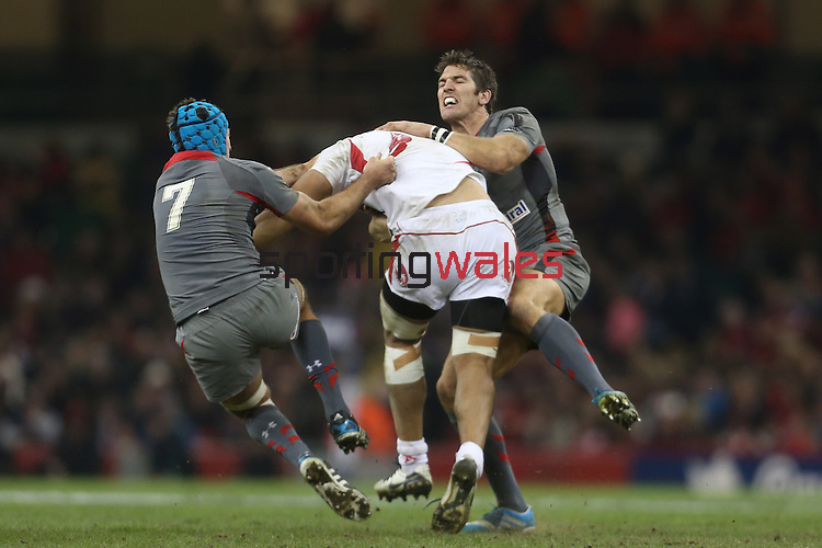 Wales pair Justin Tipuric and James Hook stop Tonga number 8 Viliami Ma'afu.<br /> <br /> Dove Men Series 2013<br /> Wales v Tonga<br /> Millennium Stadium - Cardiff<br /> 22.11.13<br /> ©Steve Pope-SPORTINGWALES