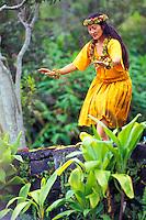 Hula dancing. Hawaiian ceremonies. Kilauea Volcano. Big Island. Hawaii