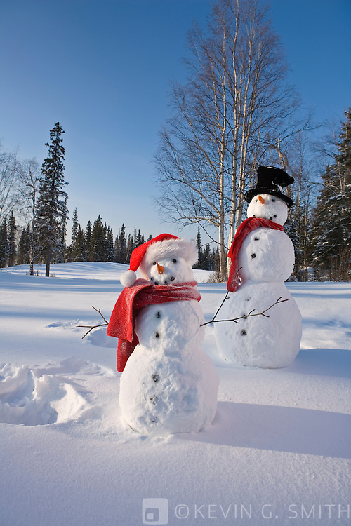 Parent and child snowmen with red scarfs black top hat and santa hat standing next to snow angels they made,  snowy meadow spruce forest in back ground.