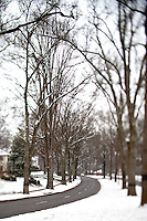 A rare snowfall coated the Southeastern city of Charlotte, NC, in January 2009. Photo taken in Charlotte's Myers Park community.