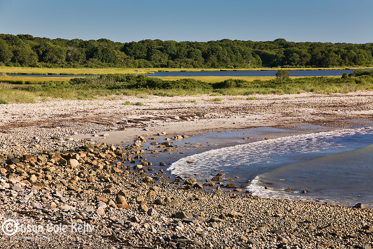 Pebble beach at Allens Pond Preserve, Westport, MA, USA
