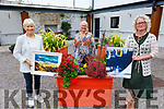 Bernadette Earley, Geraldine Kissane and Amanda Brolly (Advanced Nurse Practitioner) attending the Tralee Art Group exhibition raising funds for older person services in the Baile Mhuire Day Care Centre on Thursday