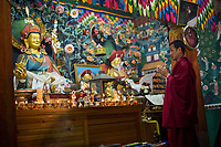 Bhutan, Paro. Zhiwa Ling Hotel. Monk performing blessing ceremony in the temple rooom.