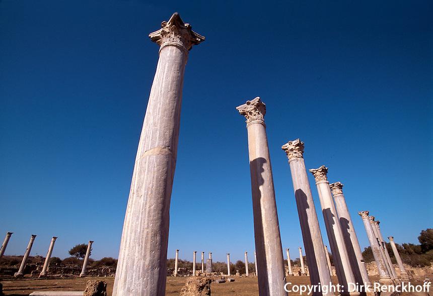 Zypern (Nord), antike Ausgrabungsstätte  Salamis, Säulen im römischen Gymnasium