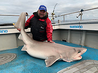 BNPS.co.uk (01202 558833)<br /> Pic: Kevin McKie/BNPS<br /> <br /> Pictured: Brian Harrison with a catch.<br /> <br /> A British fishing party has caught a record number of a rarely seen species of shark that pre-date dinosaurs.<br /> <br /> The group reeled in 14 monster sixgill sharks in one day in a secret area of the north Atlantic dubbed Jurassic Park because it is inhabited by the pre-historic fish.<br /> <br /> The sharks weighed up to 450lbs (32st) each and it took an average of 40 minutes to reel in each one.<br /> <br /> The sixgill shark - Hexanchus griseus in Latin - spends much of its time in deep water and as a result has little interaction with humans, with only one reported attack in 500 years.