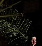 Christian pilgrims celebrate Palm Sunday in Jerusalem Sunday, March 24 2013.  Photo by Eyal Warshavsky.