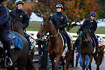 October 28, 2015:  Make Believe, Esoterique, and Miss France heading back to the barn after their morning workout on the training track.  Candice Chavez/ESW/CSM