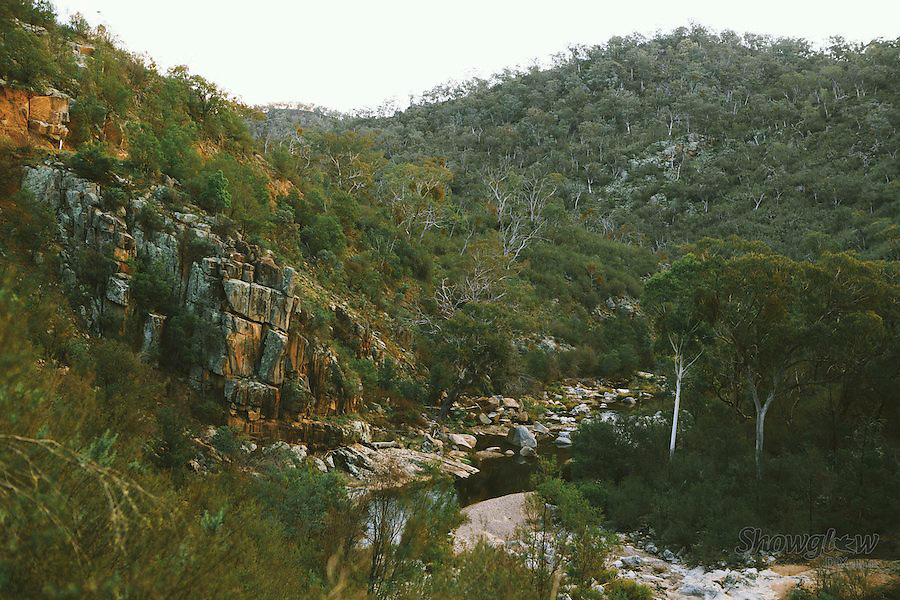 Image Ref: HC095<br /> Location: High Country, Victoria<br /> Date: 25th May 2014