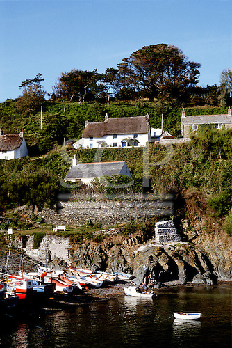 Cadgwith, Cornwall, England. Whitewashed holiday cottages on the valley sides overlooking the harbour with fishing boats.