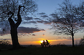 Richmond Park, England. Couple sitting on a bench at sunset. Winter love.