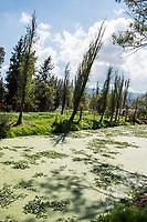 Mexico, Mixquic. Day of the Dead, Dia de los Muertos. River.