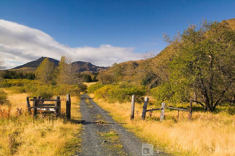 Unnamed Road and cattle fence, fall, Kalsin Bay, Kodiak Island, Alaska, USA.