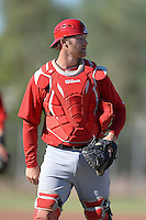 Los Angeles Angels catcher Zachary Wright (19) during an Instructional League game against the Milwaukee Brewers on October 11, 2013 at Tempe Diablo Stadium Complex in Tempe, Arizona.  (Mike Janes/Four Seam Images)