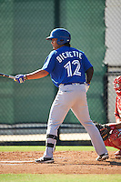 Toronto Blue Jays shortstop Bo Bichette (12) during an Instructional League game against the Philadelphia Phillies on October 1, 2016 at the Carpenter Complex in Clearwater, Florida.  (Mike Janes/Four Seam Images)