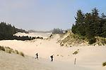 Sand dunes at Oregon Dunes Overlook Trailhead; Oregon Dunes National Recreation Area, Siuslaw National Forest, Oregon Coast..#06061257