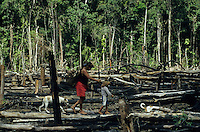 BRASILIEN Amazonas, abgeholzter Regenwald, Indianer vom Stamm der Madiha auch Kulina im Indianerdorf Sossego am Nebenfluss des Jurua  / BRAZIL, Amazon, rainforest, Madiha or Kulina indios in village Sossego at branch of river Jurua