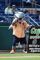 Clearwater Threshers mascot Phinley during a game against the Tampa Yankees on April 21, 2015 at Bright House Field in Clearwater, Florida.  Clearwater defeated Tampa 3-0.  (Mike Janes/Four Seam Images)