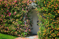 Door covered in flowers.