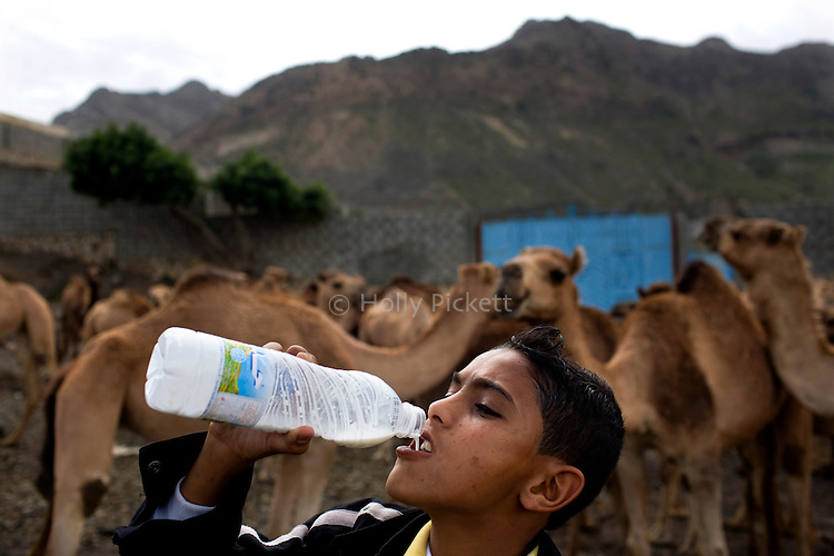 Yussef, 13, drinks fresh camel milk by the side of the road just outside of Taezz, Yemen, Nov. 30, 2009. Lawlessness, growing poverty, a water crisis, a raging conflict with Houthi rebels in Yemen's north and clashes with separatists in the South continue to destabilize the Arabian Peninsula's poorest state.