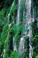 Detail of IGUAZU FALLS, IGUAZU FALLS NATIONAL PARK - PUERTO IGUAZU, ARGENTINA.
