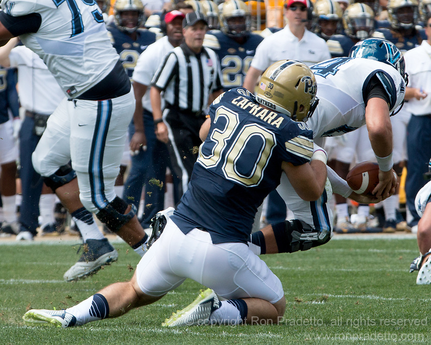 Pitt linebacker Mike Caprara sacks the quarterback. The Pitt Panthers defeated the Villanova Wildcats 28-7 at Heinz Field, Pittsburgh, Pennsylvania on September 3, 2016.