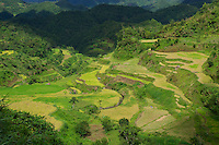 Banaue Mountain Province Rice Terraces Philippines