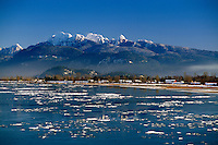 """Pitt River and """"Golden Ears"""" Mountains (Coast Mountains) in Golden Ears Provincial Park, Southwestern BC, British Columbia, Canada - Fraser Valley in Winter"""